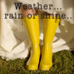 Whatever the weather……